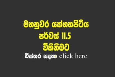 Land for sle Kandy
