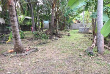 Land sale Katubedda Moratuwa