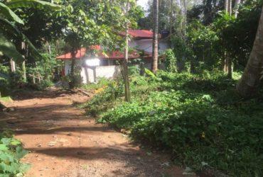 Land sale Kurunegala Polgahawela 10 p