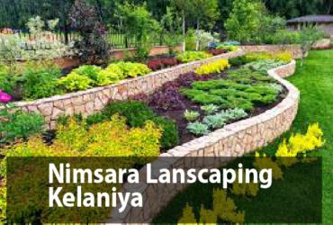 Landscaping Colombo Nimsara