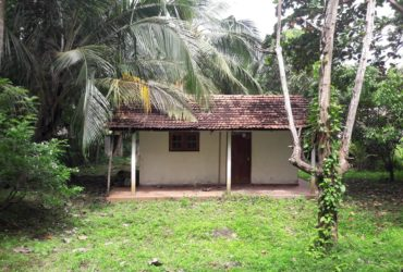Land for sale Walasmulla Hambantota
